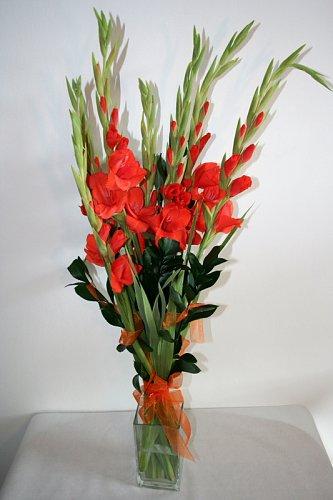 gladioly.jpg