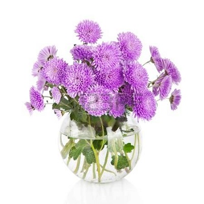 17231905-bouquet-of-many-beautiful-chrysanthemum-flowers-in-glass-vase-isolated-on-white-backgro.jpg
