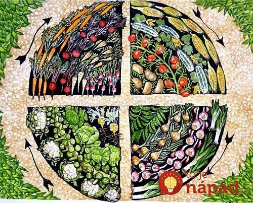 rotácia plodín.jpg