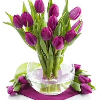 tulipány1.jpg