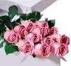 kvety.jpg